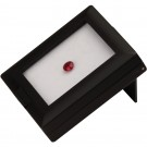 Plastic Gem Box - Black Finish with Reversible Foam Inserts (White/Black)