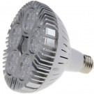 Braxon™ LED Lighting PAR 38 (50W Bulb 25°)