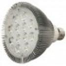 Braxon PAR38 LED Bulb (24W/30°)