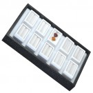 "10 Glass-Top 2 x 1"" Gem Jars w/White Rolled-Foam Inserts in Black Wood Trays, 8"" L x 5.5"" W"