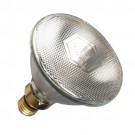 Watt Metal Halide Bulb